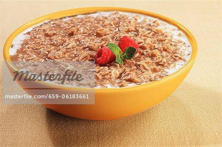 Bowl of Oatmeal with Raspberries