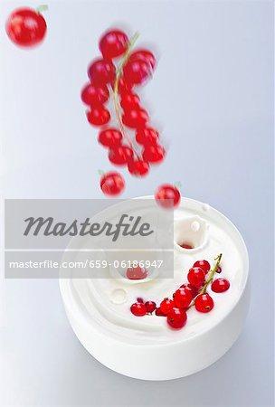 Redcurrants falling into yogurt