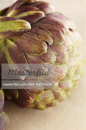 An artichoke