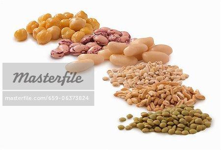 Various legumes and barley