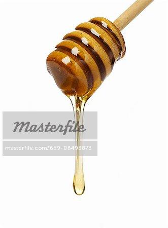 Honey dripping from a honey dipper