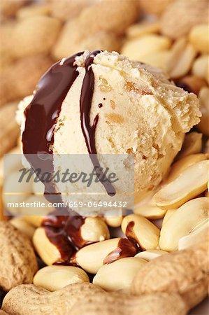 Peanut ice cream with roasted peanuts and chocolate sauce