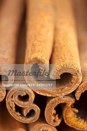 Several cinnamon sticks