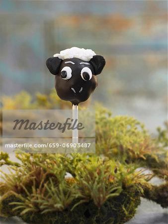 A cake pop (a chocolate sheep)