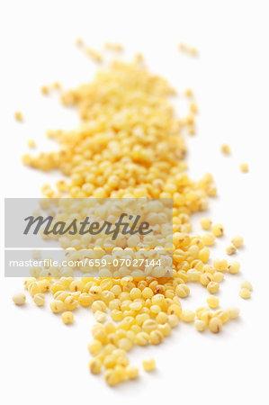 Millet (close-up)