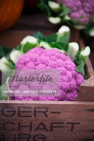 Purple and white cauliflower at the market