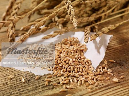 Ears of spelt, spelt seeds and spelt groats on a wooden surface