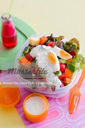 Vegetable salad with yoghurt sauce and hard-boiled egg