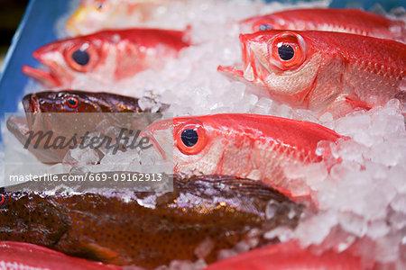 Food market, Okinawa Prefecture, Japan