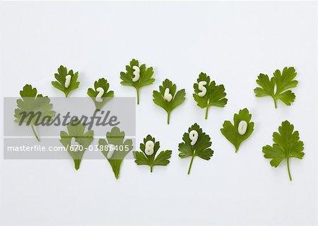Number shaped macaroni and Italian parsley