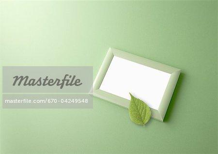 Photo frame with leaf