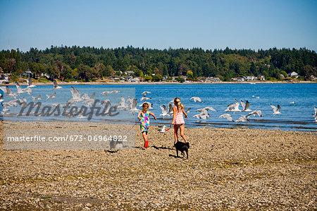 Young girls chasing gulls on beach