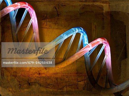 DNA molecule, artwork