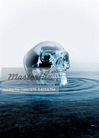Crystal skull, artwork