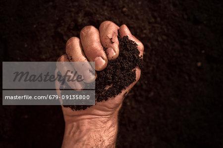 Soil in male gardener's hand.