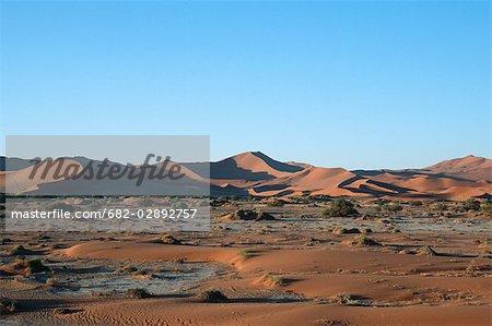 Scenic View of Desert Dunes