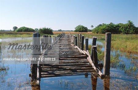 Wooden bridge over swamp, Okavango Delta, Botswana