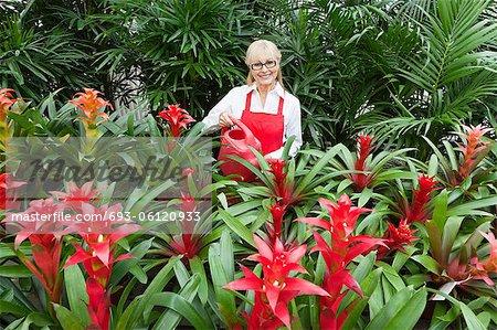 Portrait of a happy senior florist watering plants in greenhouse