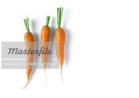 Three carrots, full length