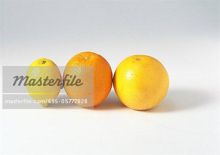Lemon, orange and grapefruit