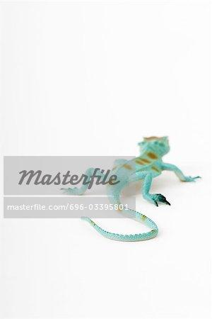 Toy lizard