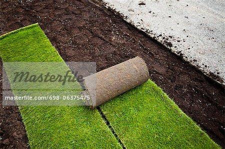 New grass turfs in formal garden