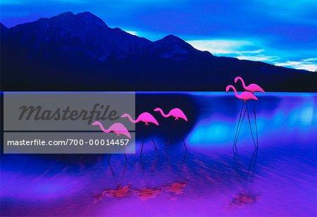 Plastic Pink Flamingos on Pyramid Lake, Jasper National Park Alberta, Canada
