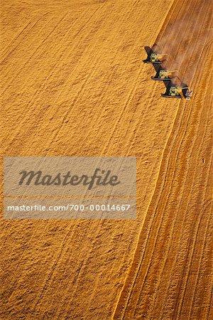 Aerial View of Harvesting Wheat Saskatchewan, Canada