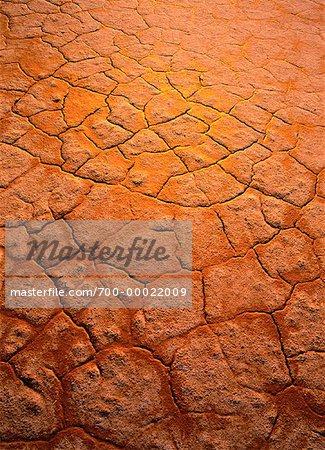 Cracked Earth, Salt Plains Wood Buffalo National Park Alberta, Canada
