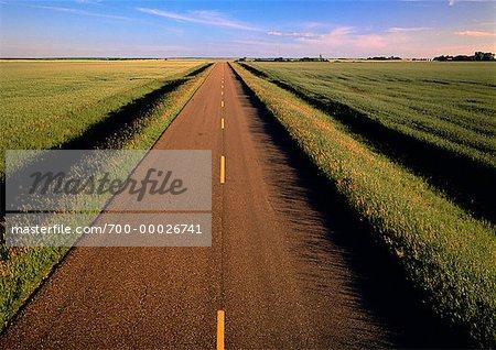 Country Road and Field Nesbitt, Manitoba, Canada