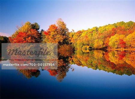 Fall Trees and Abbott Lake, Blue Ridge Parkway, Peaks of