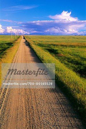 Dirt Road Through Farmland