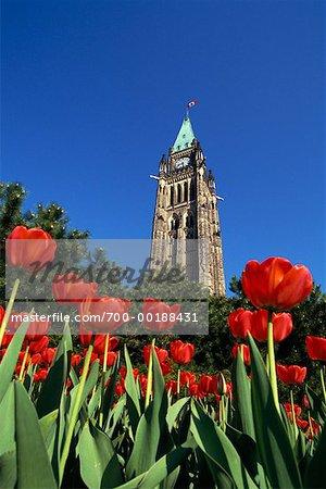 Peace Tower Ottawa, Ontario, Canada