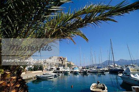Marina at Calvi Corsica, France