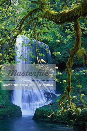 Middle North Falls Silver Falls State Park Oregon, USA