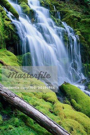 Upper Proxy Falls Oregon, USA