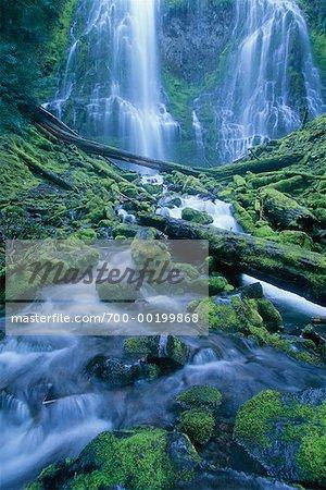 Lower Proxy Falls Oregon, USA
