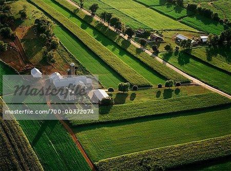 Aerial View of Farm, Lancaster, Pennsylvania, USA