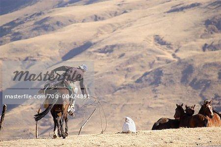 Rancher, Tafi del Valle, Tucuman Province, Argentina