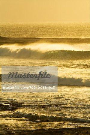 Surfer, Red Bluff, Kalbarri, Western Australia, Australia