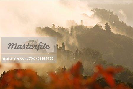 Sunrise Near Montepulciano, Tuscany, Italy