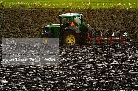 Tractor and Plow in Field, Arnemuiden, Zeeland, Netherlands