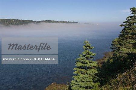 Tiverton in Fog, Nova Scotia, Canada