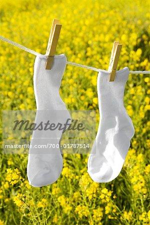 Socks on Clothesline