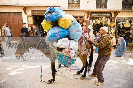 Man with Donkey, Medina of Fez, Morocco