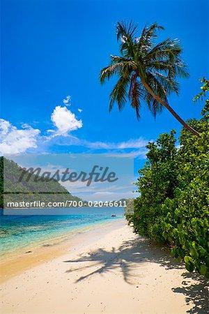 Shoreline, Bungus Bay, Sumatra, Indonesia