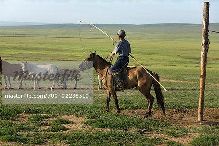 Horsemen Rounding Up Horses, Inner Mongolia, China