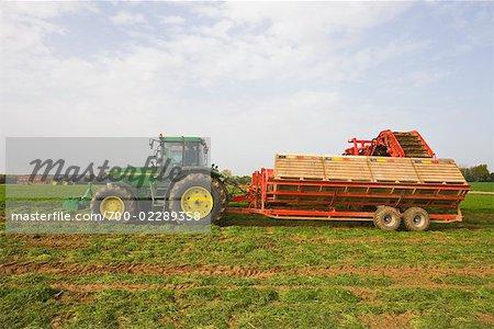 Tractor on Farm