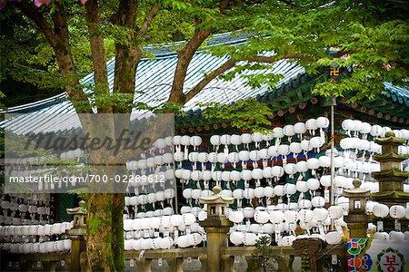 Lanterns Surrounding Temple, Bukhansan, Seoul, South Korea