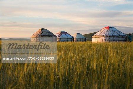 Yurts in Field, Inner Mongolia, China